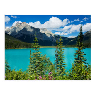 Emerald Lake In Yoho National Park Canada Postcard