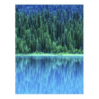 Emerald Lake, Yoho NP, BC, Canada Postcard