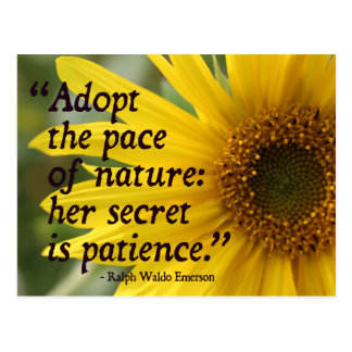 Emerson Quote on Nature / Patience Postcard