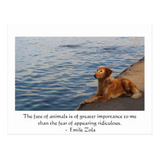 Emile Zola Animal Rights Quote Saying Postcard
