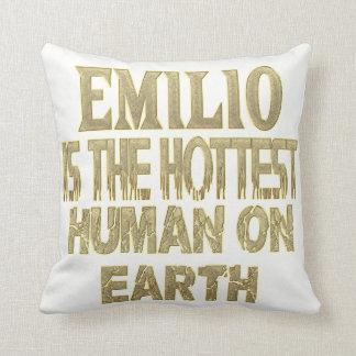 Emilio Pillow