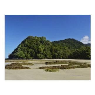 Emmagen Beach, Daintree National Park (UNESCO 2 Postcard