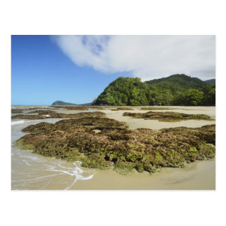 Emmagen Beach, Daintree National Park (UNESCO 3 Postcard