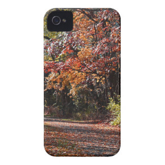 Emotional Collapse iPhone 4 Case-Mate Case