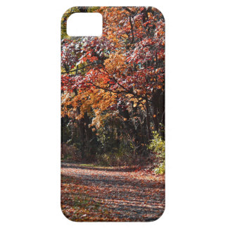 Emotional Collapse iPhone 5 Case