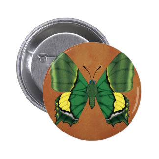 Emperor of India Butterfly 2 Inch Round Button