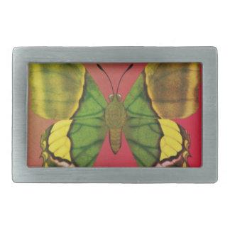 Emperor of India Butterfly Belt Buckle