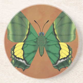 Emperor of India Butterfly Drink Coaster