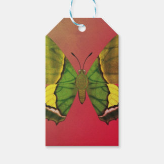 Emperor of India Butterfly Gift Tags
