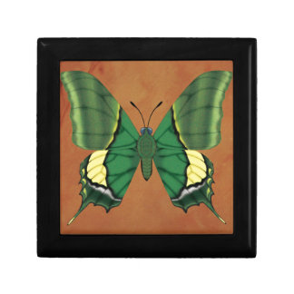 Emperor of India Butterfly Keepsake Boxes