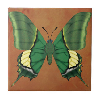 Emperor of India Butterfly Tile