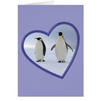 Emperor Penguin Card