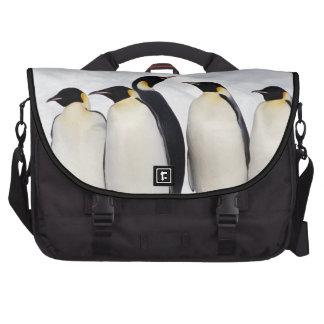 Emperor Penguins Commuter Bags
