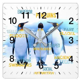Emperor Penguins Square Wall Clock