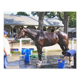 "Empire Stakes Winner ""Saratoga Snacks"" Art Photo"