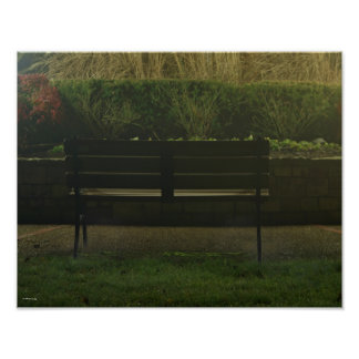 Empty Bench at Night Poster