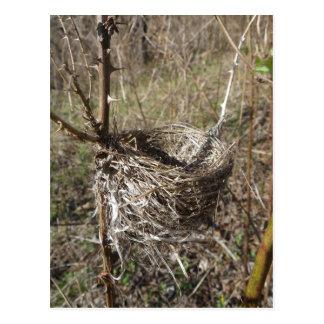 Empty Nest postcard