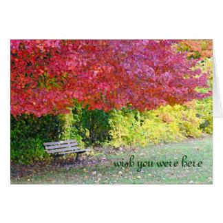 "EMPTY PARK BENCH, ""WISH YOU WERE HERE"" (PHOTOG.) GREETING CARDS"