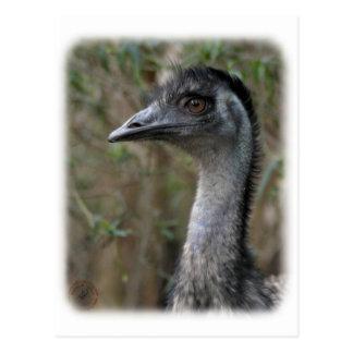 Emu 9Y209D-200 Postcard
