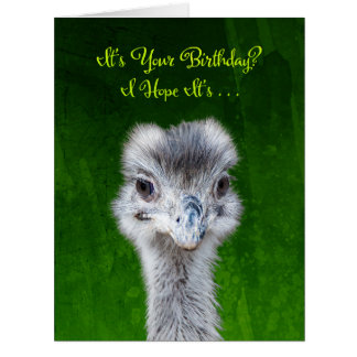 Emu - Have an Emusing Birthday Big Greeting Card