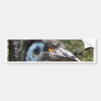 Emu in Australia Bumper Sticker