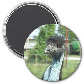 Emu Magnet