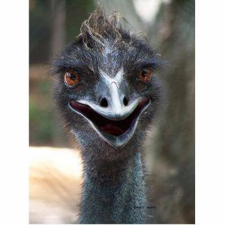 Emu photograph saying hello! Open beak Photo Sculpture Button
