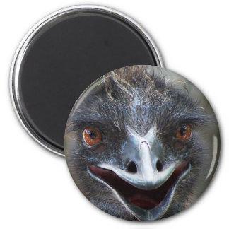 Emu saying HI! Open beak big brown eyes picture 2 Inch Round Magnet