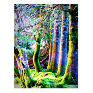 Enchanted Forest Abstract Art Postcard