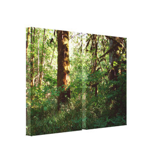 Enchanted Forest Stretch Canvas Print