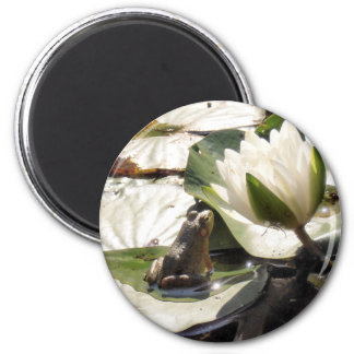 Enchanted Frog 2 Inch Round Magnet