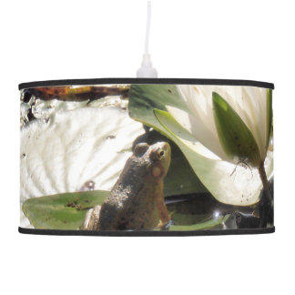 Enchanted frog lamp