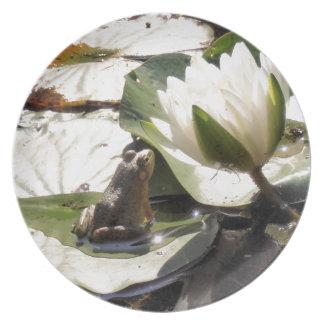 Enchanted Frog Plate
