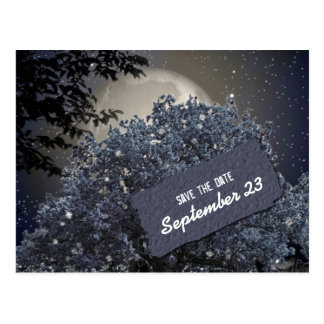 Enchanted Night Blue Tree Save the Date Postcard