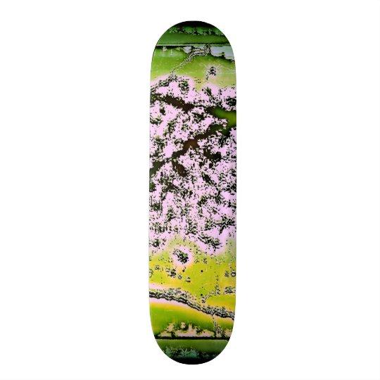 Enchanted Skateboards