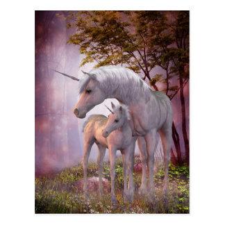 Enchanted Unicorns Postcard