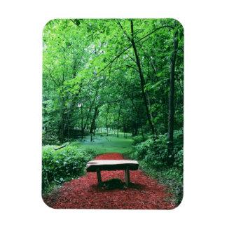 Enchanted Woods Rectangular Photo Magnet