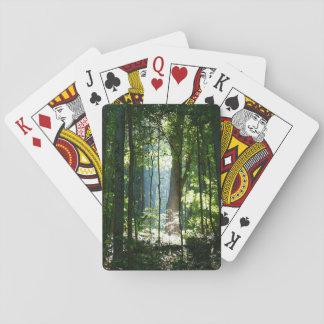 Enchantment Poker Deck