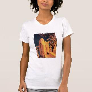Enchantment Shirt