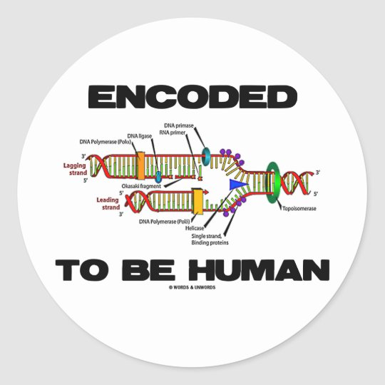 Encoded To Be Human (DNA Replication) Classic Round Sticker