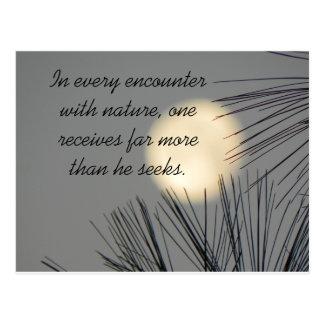 Encounters Nature Postcards