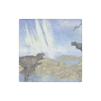 End of dinosaurs stone magnets