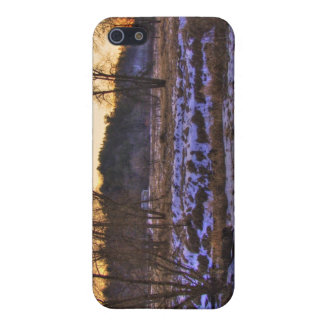 End of Winter Forrest sunset 002 iPhone 5 Covers