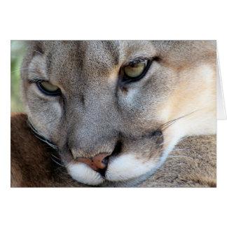 Endangered Species: Florida Panther (4071) Card
