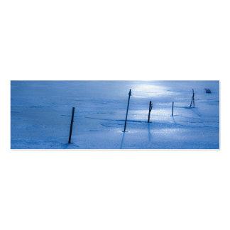Endless blue ice mini business card