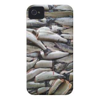 ENDLESS TROUT Case-Mate iPhone 4 CASE