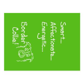 Energetic border collie postcard