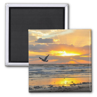 Engagement Proposal Sunrise on the Beach Magnet