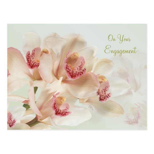 Engagement - Whitw Orchids in full bloom Postcard