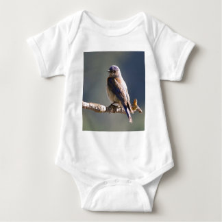 Engaging Western Bluebird Sits On End Of Twig Shirts
